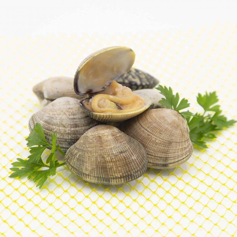 Almeja Japónica de Galicia. 1 kg