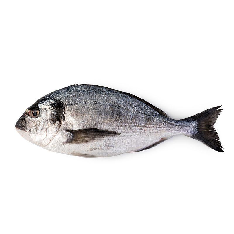 Dorada. 400- 500 gr